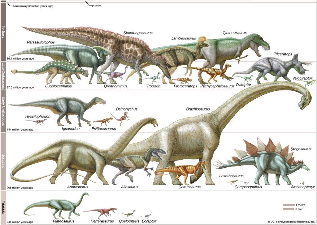 ไดโนเสาร์ ความหมาย ประเภทของไดโนเสาร์และข้อเท็จจริง